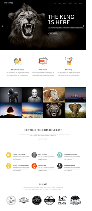 Enchanted | Responsive Multipurpose theme